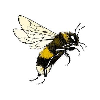 Latająca pszczoła.