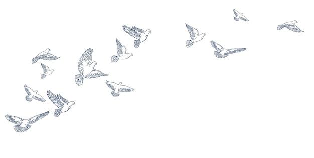Latające gołębie, ręcznie rysowane, grafika liniowa. ilustracja wektorowa