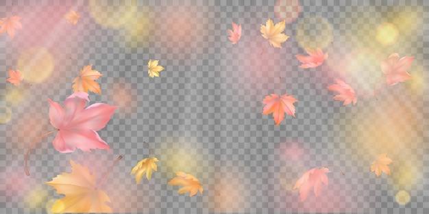Latające jesienne liście klonu. upadek streszczenie tło