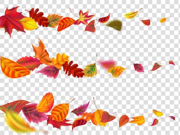 Latające jesienne liście. spadek liść transparent, żółty liść ogród latać realistyczny zestaw ilustracji