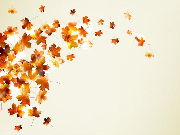 Latające jesienne liście tło z lato.