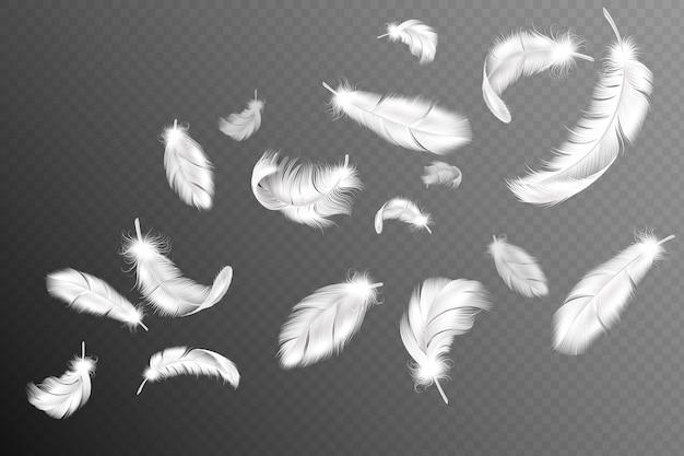 Latające pióra. spadający, kręcony, puszysty, realistyczny biały łabędź, przepływ piór gołębicy lub anielskich skrzydeł, kolekcja upierzenia miękkich ptaków