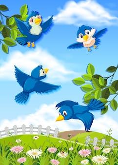 Latające ptaki w przyrodzie