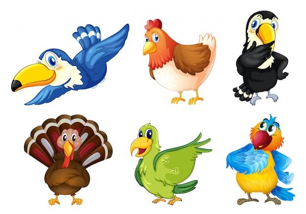 Latające ptaki