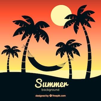 Lato tło z sylwetki drzewa palmowego