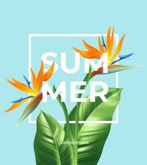 Lato tropikalny tło z kwiatami strelitzia i tropikalnymi liśćmi