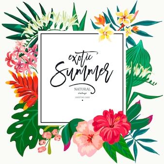 Lato wektor pozostawia rocznika egzotyczne kartkę z życzeniami