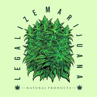 Legalizuj ilustracje z odznaką liści marihuany leśnej