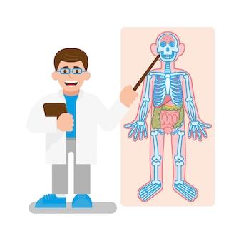 Lekarz pokazuje model szkieletu. edukaci nauka ludzka anatomia, nowożytny ilustracyjny płaski projekt.