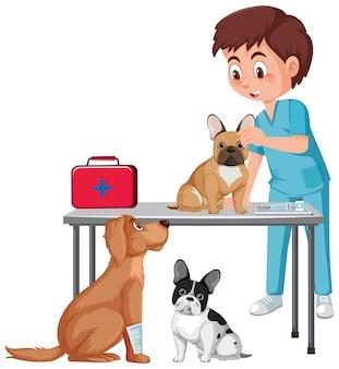 Lekarz weterynarii i psy na białym tle