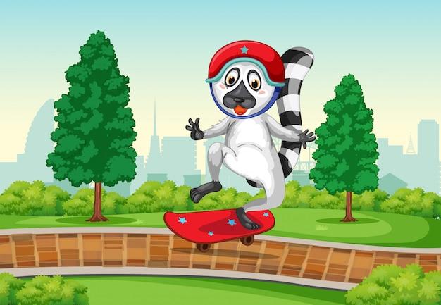 Lemur grający w skatebaord w parku