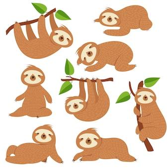 Leniwce kreskówkowe. śliczne lenistwo wiszące na gałęzi w dżungli amazońskiej. leniwe postacie zwierząt z dżungli