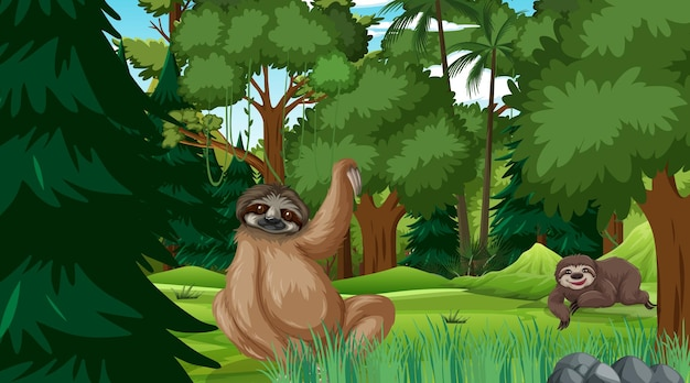 Leniwiec w lesie w scenie dziennej z wieloma drzewami