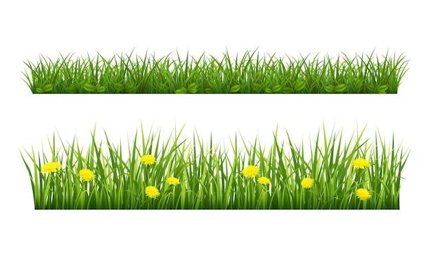 Letnia granica trawy