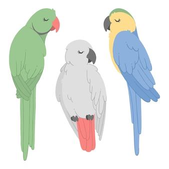 Letnia kolekcja tropikalnych papug ręcznie rysowany zestaw z egzotycznymi ptakami