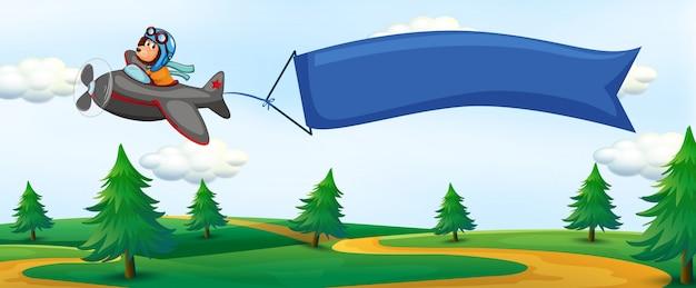 Lew jedzie samolotem