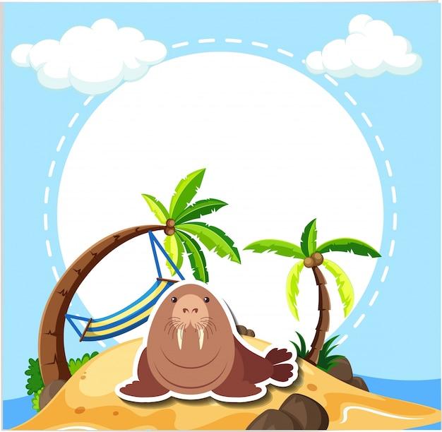 Lew morski na plaży
