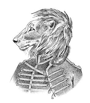 Lew przebrany w militarny styl