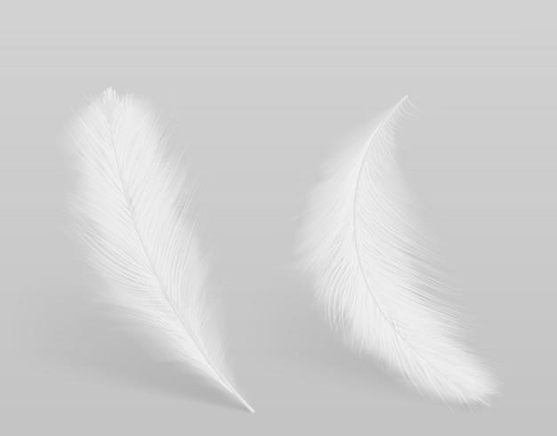Leżąc, spadające ptaki czyste białe, puszyste pióra 3d realistyczny wektor izolowane z cieniami. miękkość i wdzięk, czystość i delikatność element projektu koncepcyjnego. lekki symbol
