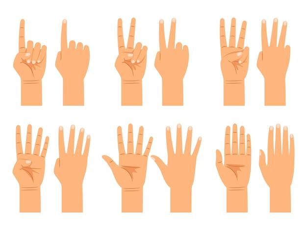 Liczenie rąk na białym tle