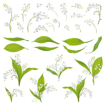 Lily valley ręcznie rysowane akwarela kwiaty, liście i elementy kwiatowe do dekoracji, wesele, tapety, tkaniny. zestaw sprężyn botanicznych. ilustracja wektorowa