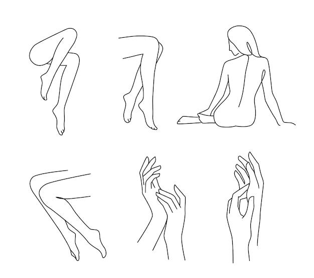Linia kobiety nogi dłoni i ciała.