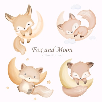Lis i księżyc kolekcja zestaw z akwarela ilustracja