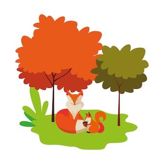 Lis i wiewiórka zwierzęta o charakterze