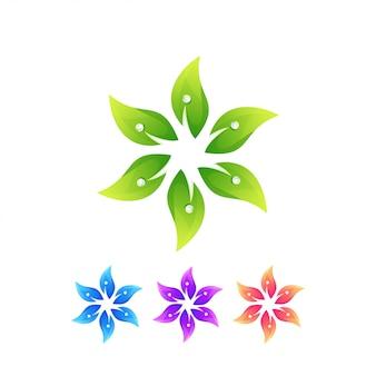 Liść kwiat roślina natura