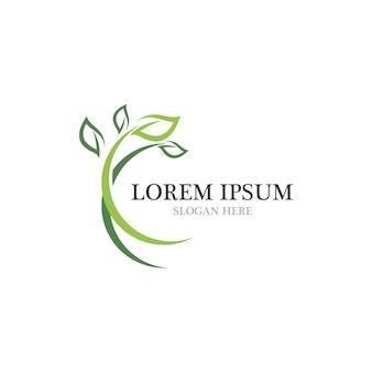 Liść logo i ikona natura element wektora