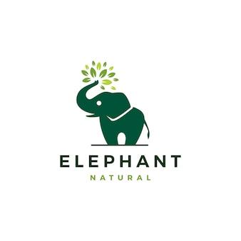 Liść słonia pozostawia drzewo ikona logo szablon