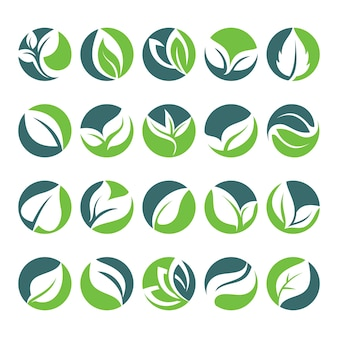 Liść zielony liści w kształcie koła ikona