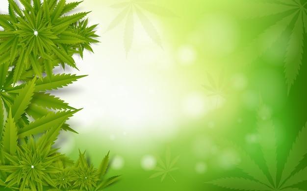 Liści marihuany zielonego narkotyku marihuany tło