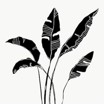 Liście bananowca tropikalnych palm. piękne ręcznie rysowane egzotyczne rośliny na białym tle. projekt wektor.