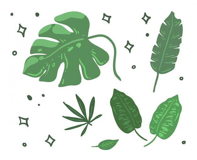 Liście doodle ilustracji