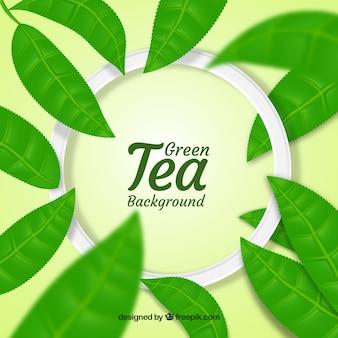 Liście herbaty tło w realistyczny styl
