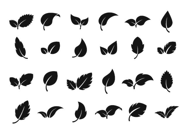 Liście logo liść zestaw ikon ziołowa eko abstrakcyjna etykieta bio wegańska lub apteka koncepcja świeża mięta izolat...