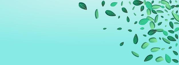 Liście mięty rozmycie wektor panoramiczny niebieskim tle projektowania. tło liści lasu. realistyczny szablon zielonych zieleni. wzór liści herbaty.
