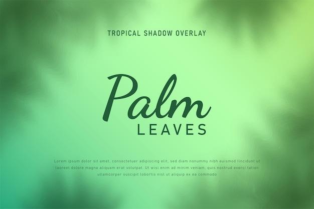 Liście palmowe cień nakładka tło wektor ilustracja