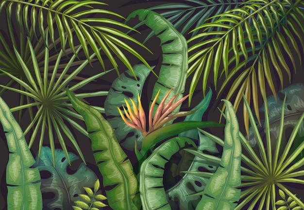 Liście palmowe tło. tropikalna letnia dżungla, ulotka z egzotycznymi roślinami, plakat z zielonym egzotycznym lasem. vintage świeże tapety dżungli