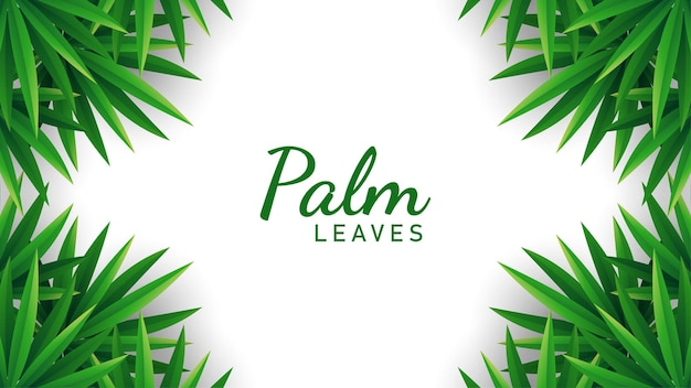 Liście palmowe tło wektor ilustracja