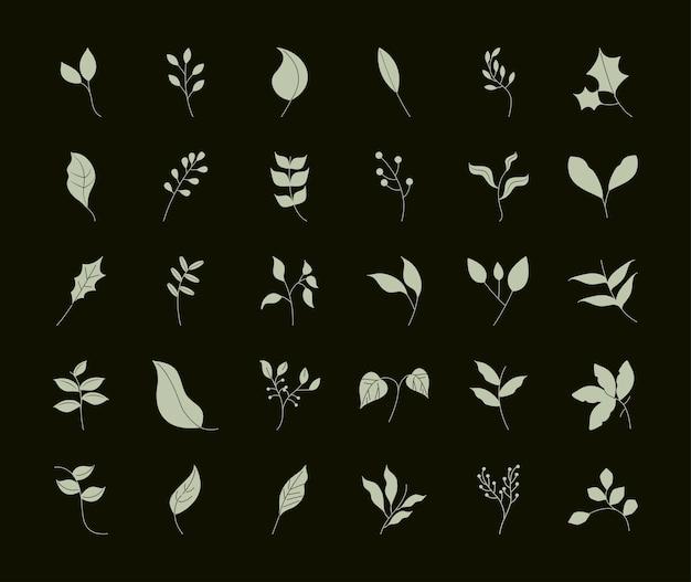 Liście styl linii, gałęzie drzewo roślina liść naturalny