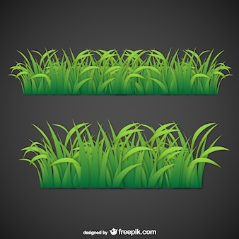 Liście trawy wektora
