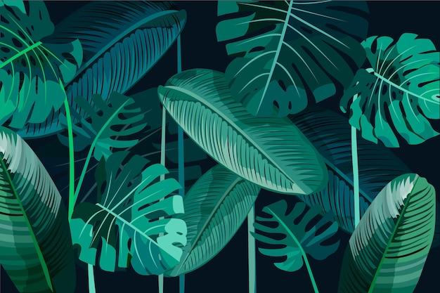 Liście tropikalne liście tło