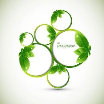 Liście z ekologią w tle