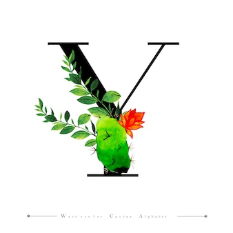 Litera alfabetu y z kaktusa akwarela