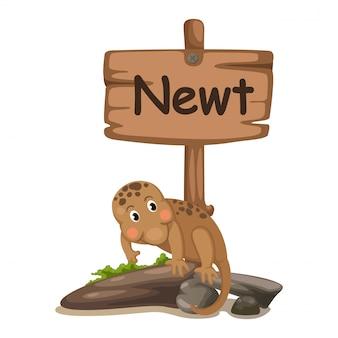 Litera alfabetu zwierząt n dla traszki