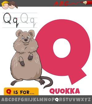 Litera q z alfabetu z kreskówkową postacią zwierzęcia quokka