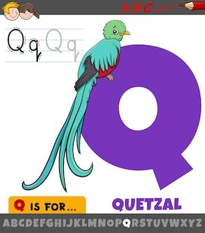 Litera q z alfabetu z quetzal ptak zwierzęcy charakter