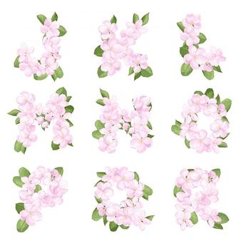 Litery jr alfabetu angielskiego z kwiatu jabłoni
